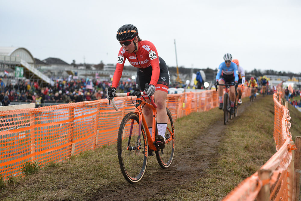0126 Heigl Cross Haumesser 04